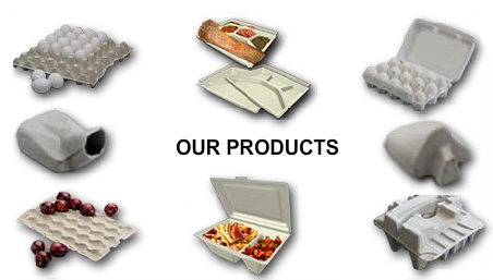 molded pulp products